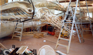 Vac formed polycarbonate being fitted around hand carved skeletal structure
