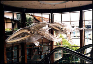 """""""Whales"""" Hand carved skeleton, vac formed polycarbonate shell, 8m long, Cockle Bay, Sydney"""